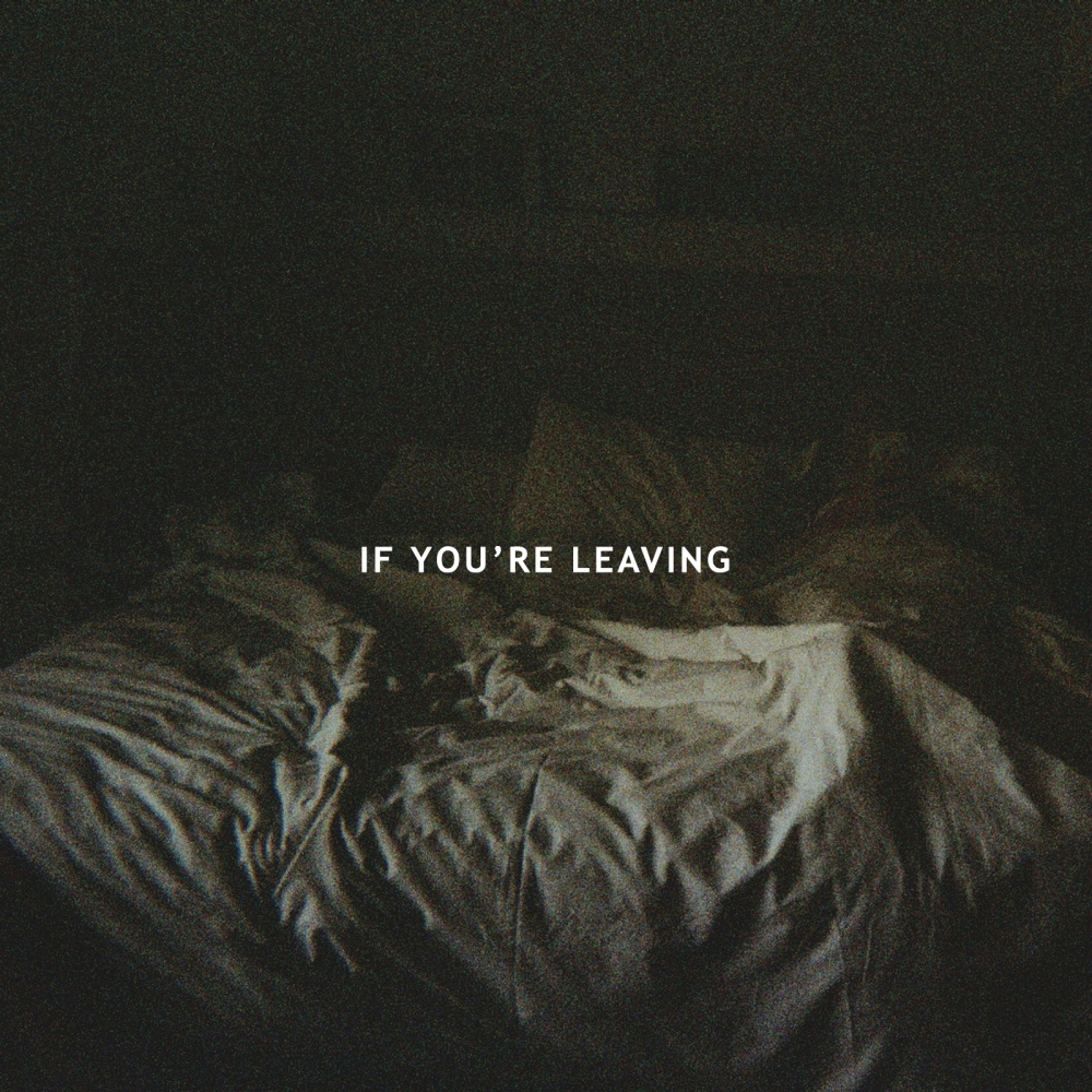 Le Youth - If You're Leaving ft. Sydnie.jpg